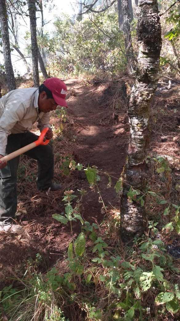 Recorren brigadas y guardabosques de la CGE La Malinche para detectar incendios