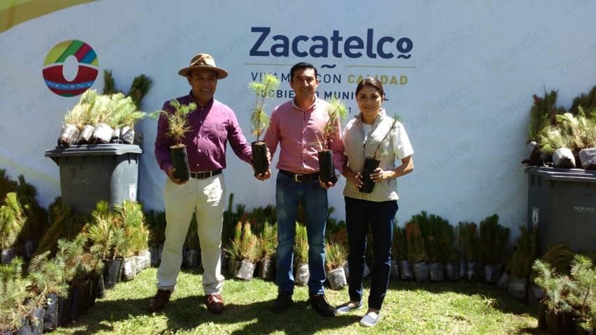 Ayuntamiento implementa campaña de reforestación y empleo temporal