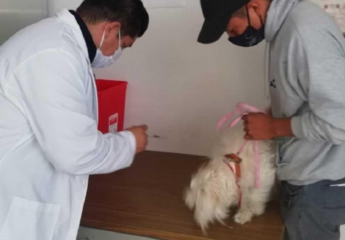 Ofrece atención integral módulo canino de SESA
