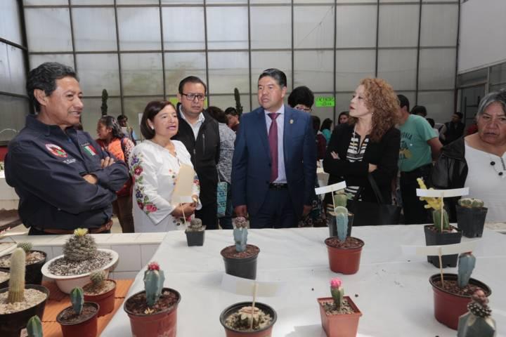 Impartió UATx curso sobre cultivo de cactáceas