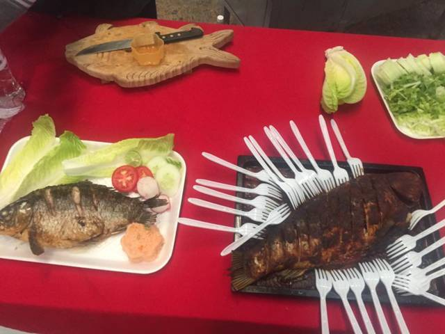 Da inicio la primera feria del pescado en tequexquitla for Criadero de carpas