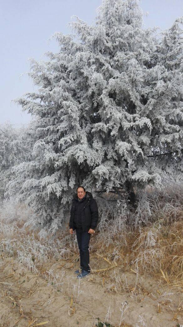 Nieve cubre árboles y matorrales de la zona oriente del estado