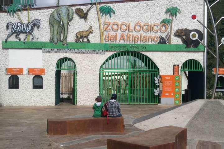 Zoológico del Altiplano, opción de recreación para este periodo vacacional