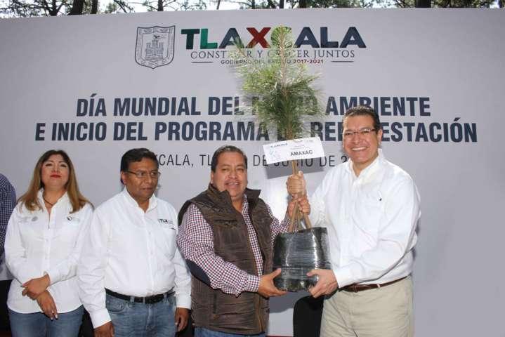 Un millón de árboles para reforestación: Marco Mena
