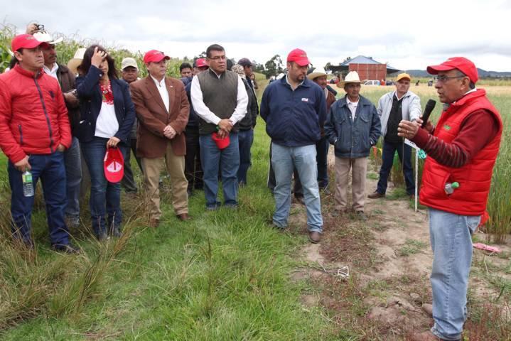 Presentan avances en investigación de mejoramiento de semillas
