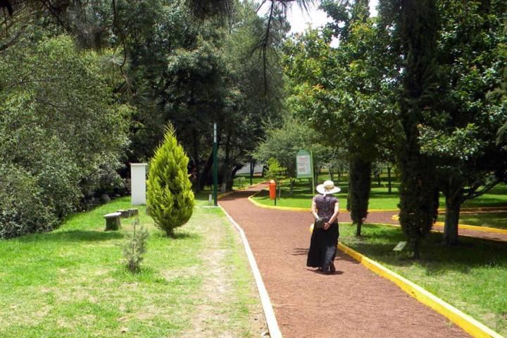 Invita CGE a función de títeres en el Jardín Botánico
