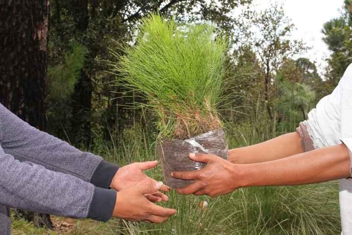 Emite CGE recomendaciones para el cuidado del medio ambiente