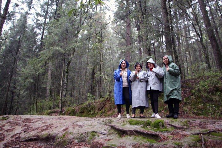 Proyecta SECTURE 111 mil visitantes al santuario de las luciérnagas