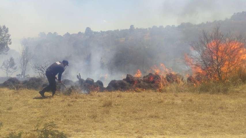 Controlan incendio que amenazaba con llegar a domicilios