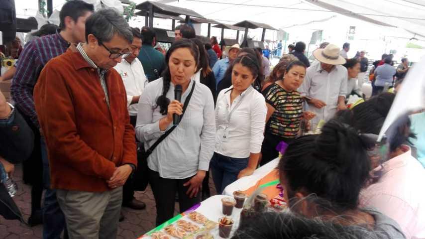 Participa Xicohtzinco en la Feria de Agricultura Familiar