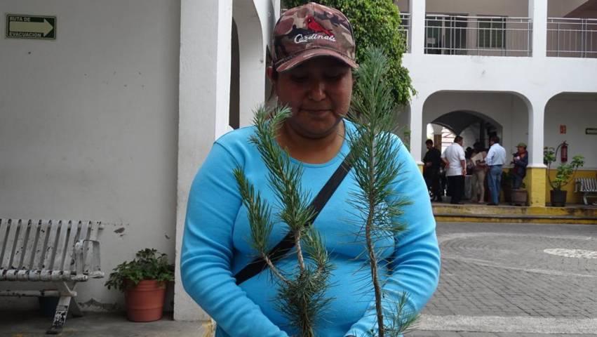 Con entrega de más de 1000 árboles inicia Primera Etapa de Reforestación en Xicohtzinco