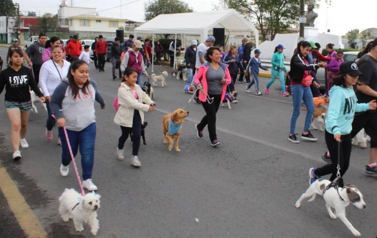 Ayuntamiento fomenta la sana convivencia y el cuidado de las mascotas