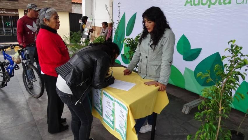 Supera expectativas campaña de reforestación en Xicohtzinco