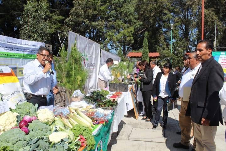 Ayuntamiento se suma a la 20ª Semana Nacional de la Cultura Forestal