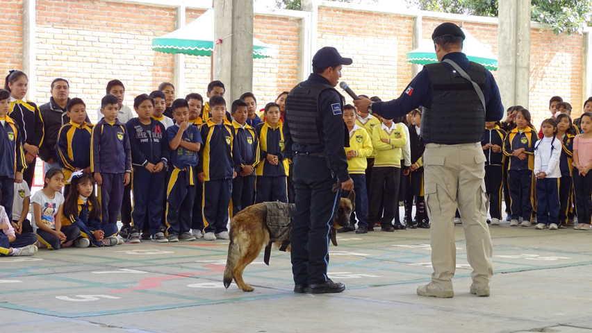 Realiza Unidad Canina de Xicohtzinco demostración en instituciones públicas