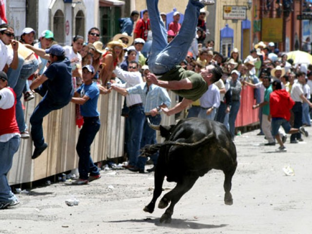 Serán soltados 32 toros de lidia en la edición 142 de la Huamantlada