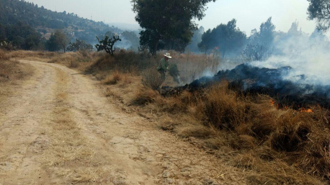 Consume incendio más de 40 hectáreas de pastizales y terrenos de labor en Ixtacuixtla
