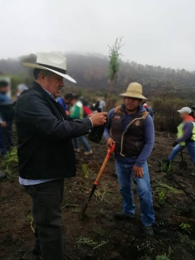 Alcalde encabezo Día Mundial del Medio Ambiente sembrando más de mil árboles