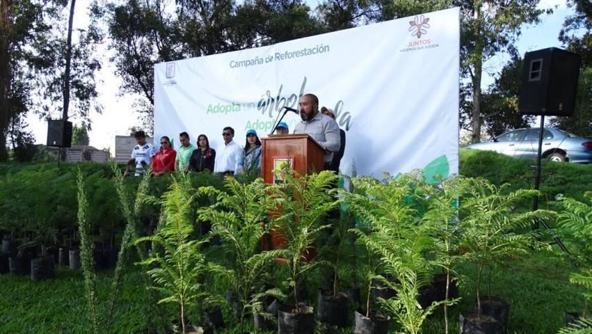 Inician plantación de más de 8 mil árboles en Xicohtzinco