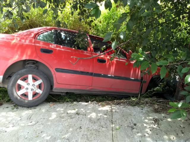Sujeto impacta su vehículo contra un árbol y muere al instante