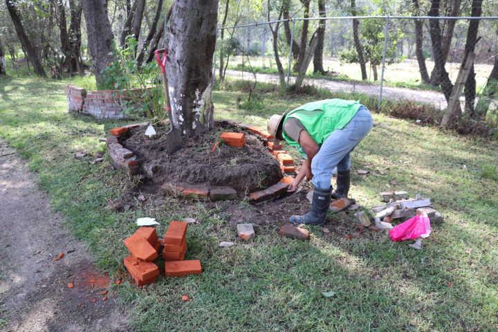 Trabaja Gobierno de Xicohtzinco en la rehabilitación de espacios públicos