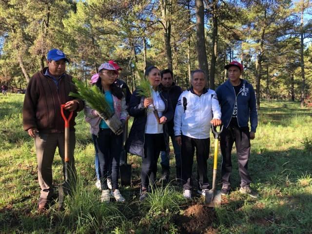 Con la suma de esfuerzos podemos proteger los bosques: alcalde