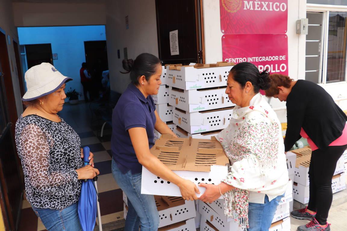 Reciben beneficiarios paquetes de aves de postura en Xicohtzinco