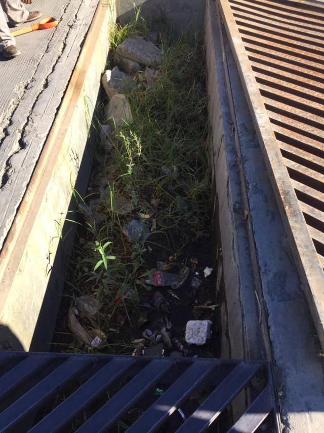 Ayuntamiento previene inundaciones desazolvando drenajes y rejillas pluviales