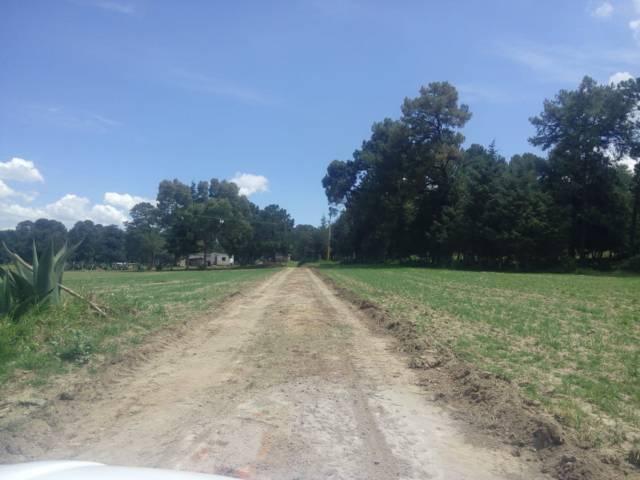 Ayuntamiento realiza rastreo y renivelación de 19 mil m2 de caminos rurales