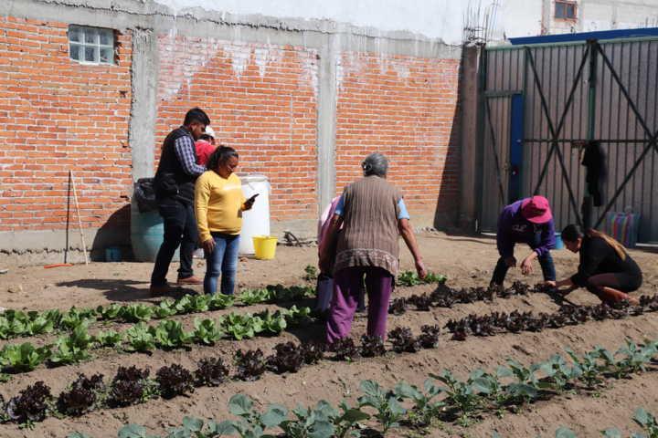 Aprenden pobladores de Xicohtzinco a realizar composta y biofertilizantes naturales