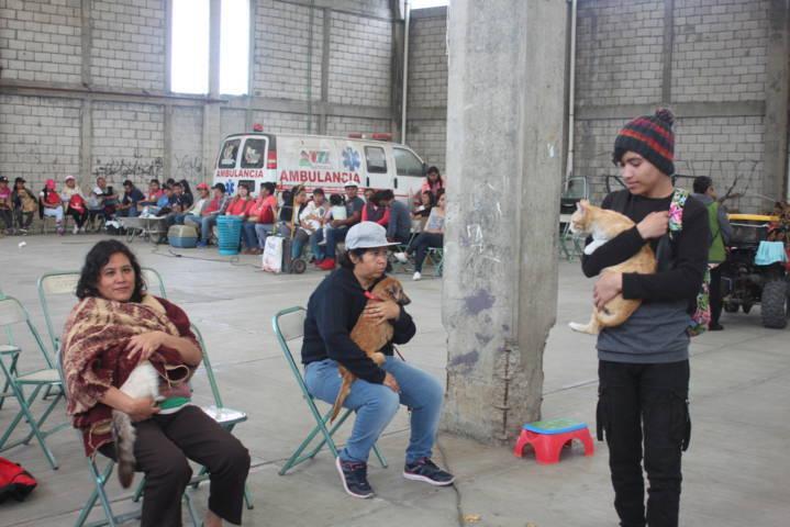 Se realizan más de 160 esterilizaciones de mascotas en Xicohtzinco