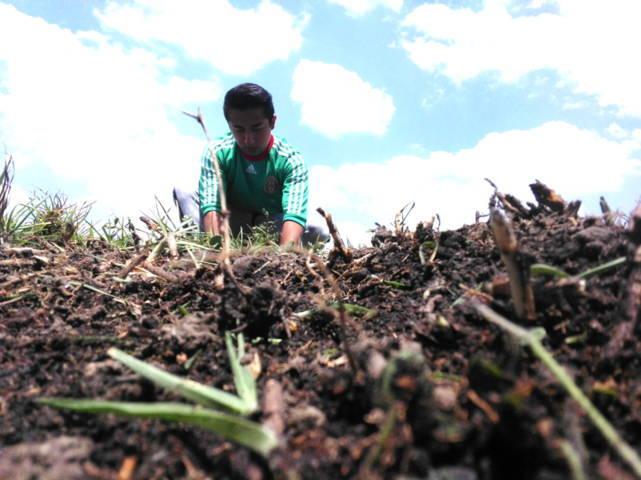 Ecojoven Apizaco realiza acciones de reforestación, ahora en lotes baldíos