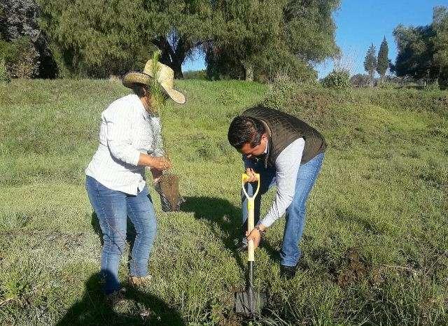 Lardizábal realiza campaña de reforestación 2017