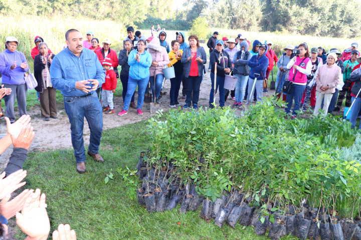 Con reforestación, reactivan en Xicohtzinco zona ecológica