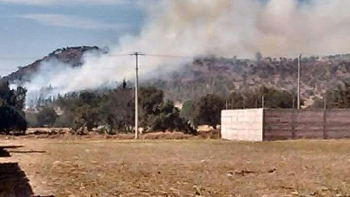 Incendio consume superficie forestal en Tlaxco