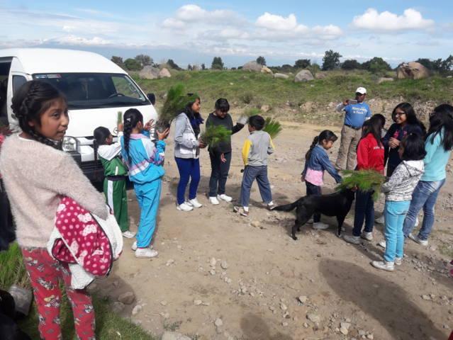 Niños Difusores se suman al cuidado del medio ambiente sembrando arbolitos