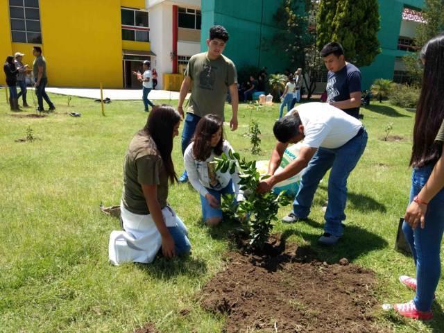 Realizan Jornada De Reforestación en la UPTX