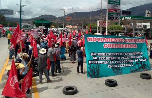 Prometió AMLO fertilizante gratuito a campesinos de Guerrero y ahora no cumple: Antorcha