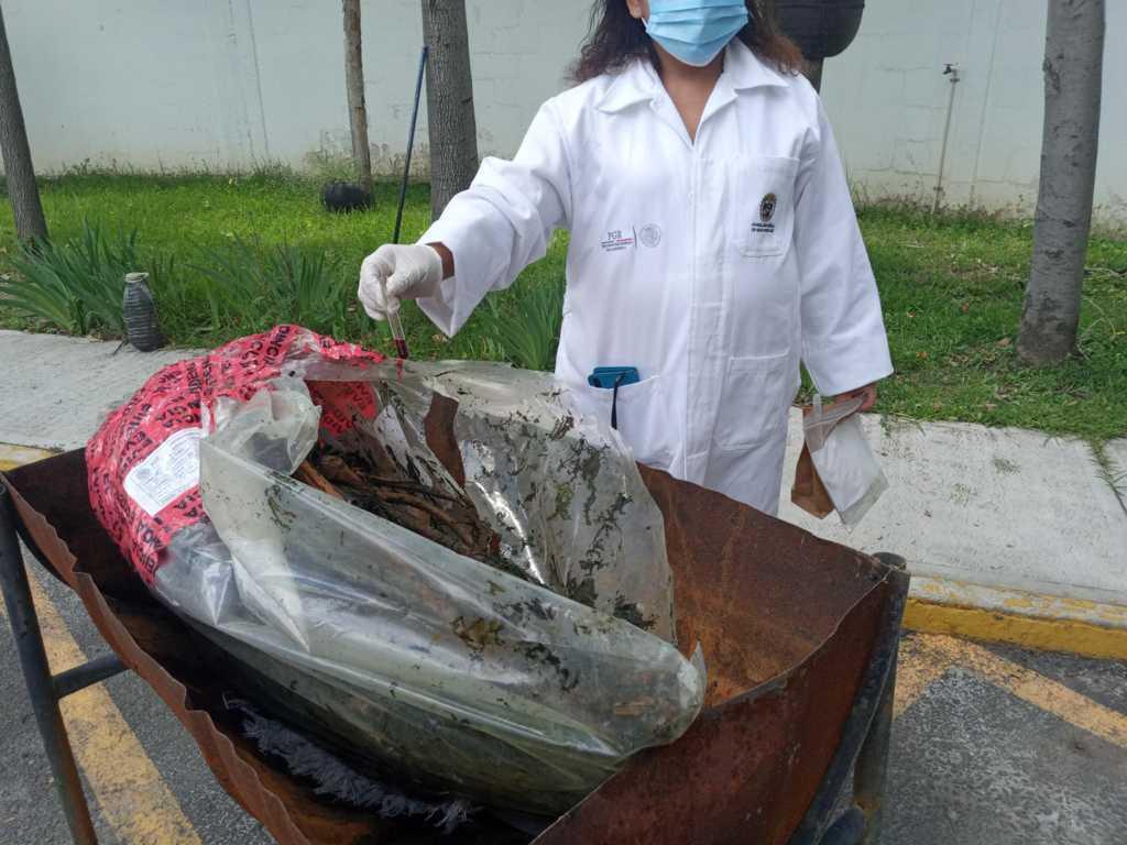 Incinera FGR narcótico y destruye objetos de delito