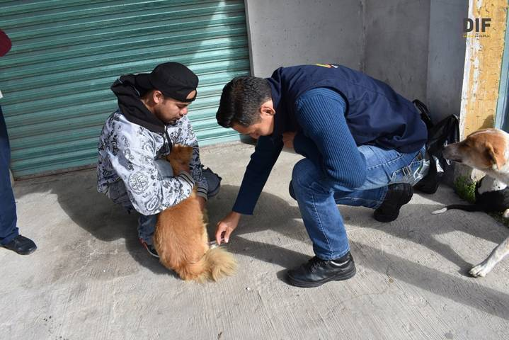 Módulo Canino de Zacatelco, aliado eficiente de la ciudadanía y sus mascotas