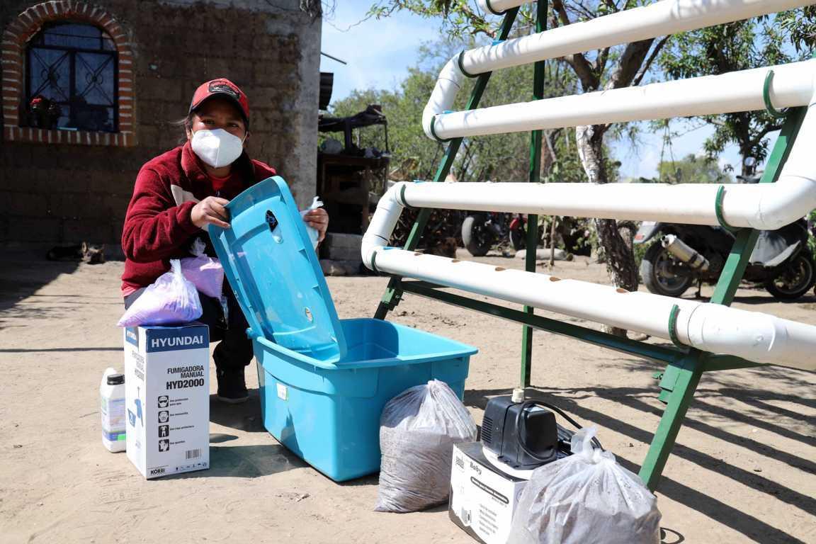 "Inicia ""Supérate"" entrega de paquetes de hidroponía a familias beneficiarias"