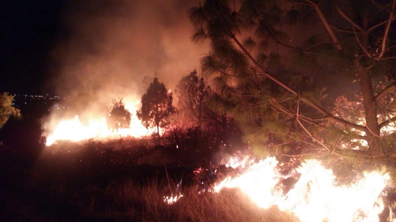 Se incendiaron matorrales en Amaxac y llamas se salieron de control