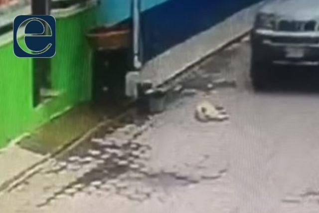 Sujeto aplasta a un perro en Zacatelco, desata furia en las redes