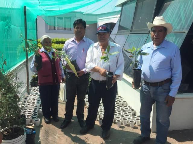 Gobierno de Tepetitla promueve plantación de árboles frutales
