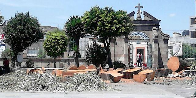 Duerme la PROFEPA ante evidente ecocidio en Zacatelco