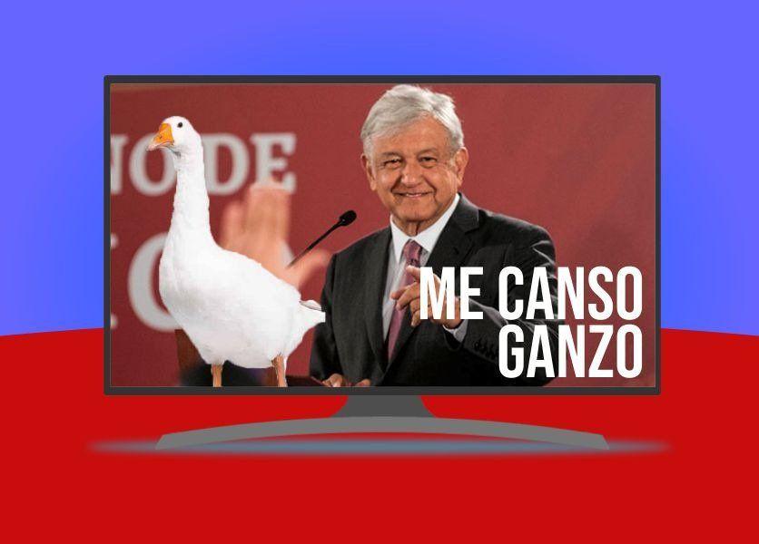La frase 'Me Canso Ganso'  de AMLO saltará a la televisión  por el Canal 22