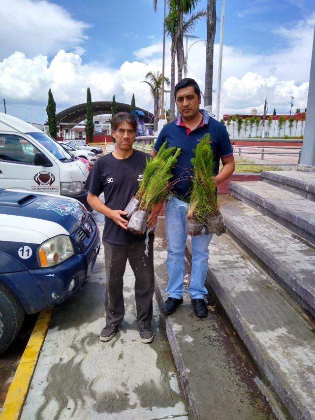 En lo que va del año se han plantado más de 4500 árboles en Tzompantepec