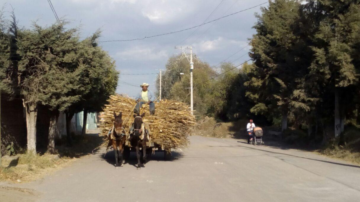 Campesinos exigen modificación de obra carretera