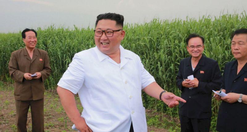 Corea del Norte pretende mejorar su agricultura exigiendo excremento a los ciudadanos