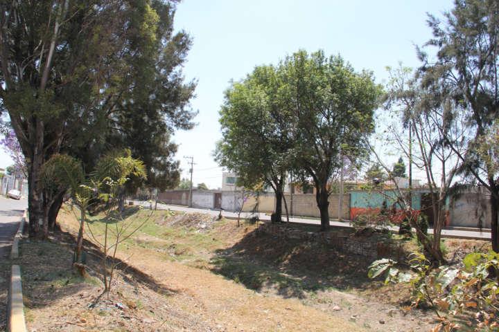 Ayuntamiento implementa faena de limpieza en barrancas del municipio